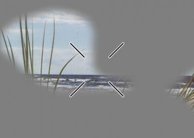 Voorbeeld zicht Glaucoom