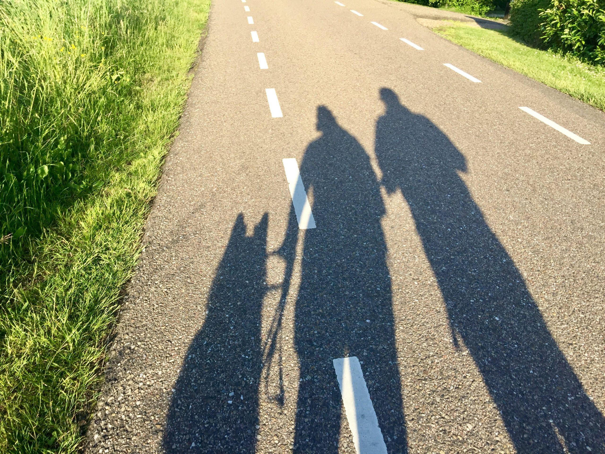 Schaduw van twee mensen met een geleidehond